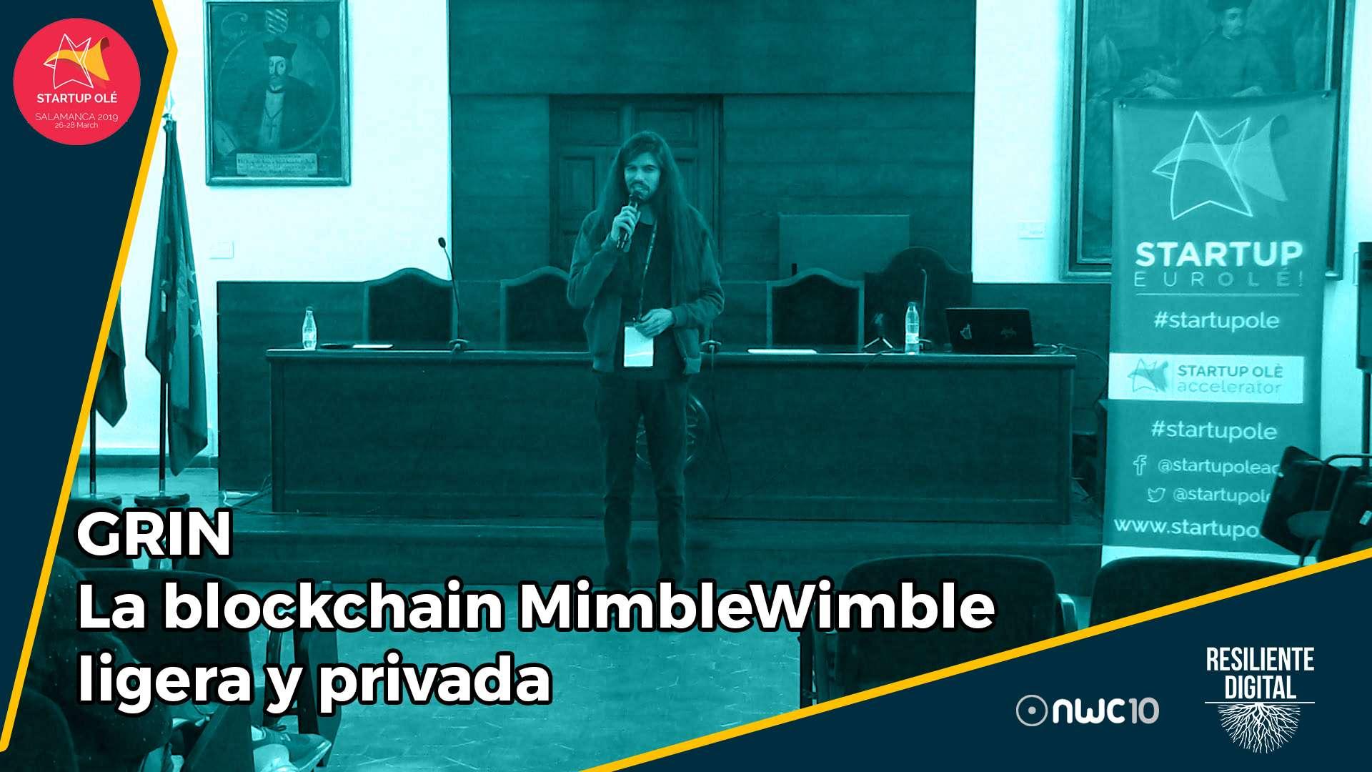GRIN. La blockchain MimbreWimble ligera y privada.